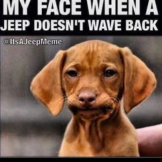 Hahaha #jeep #wrangler #offroad @offroadparadise @officialoffroad @offroadnation @jeepforce @liftednations