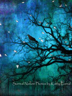 Nature Photography Surreal Trees Ravens Gothic Blue by KathyFornal, $20.00