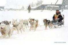 Itelmen, People of Kamchatka