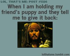 Pirates of Caribbean Funny and True