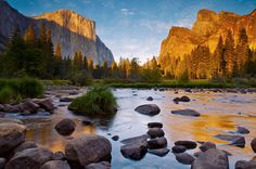 Yosemite In Gold And Blue