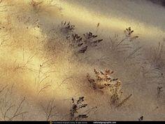 Plaatsen met ziel - achtergronden voor op je mobiel: http://wallpapic.nl/national-geographic-foto-s/plaatsen-met-ziel/wallpaper-38383