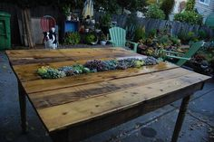 Pallet table with succulent garden in the middle