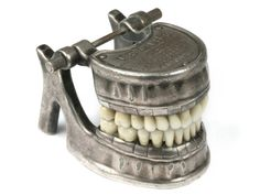 Antique Dental Model Jaw and Teeth