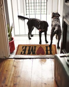 Someday soon... #dogs #home #wedded bliss