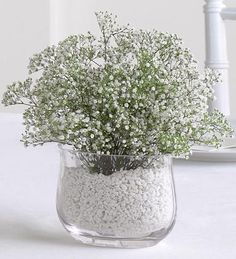 """Gyp or its more common name """"Baby's Breath"""" is a perfect accent for any room.  Photo credit: Robins Nest Flowers & Gifts Inc"""