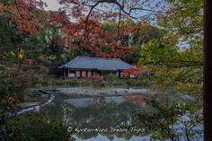 https://flic.kr/p/ydPYcj | Jōruri-ji Temple, Autumn 2014, Kizugawa, Kyoto. | The Paradise Hall of Jōruri-ji (浄瑠璃寺) , built in 1107, located in the town of Kamo near the ancient capital of Nara. The historical Japanese garden, is one of the few remaining examples of a Paradise garden of the early Heian Period. On either side of the pond are stone lanterns dating to 1366.