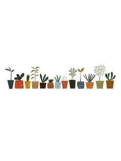 Pot Plants - Blanca Gomez