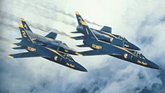 Grumman F11F/F-11 TIGER flown by the Blue Angels