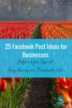 Getting frustrated with Facebook when you are ready to find customers and grow your business? Here are 25 Facebook Post Ideas for Business