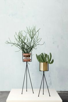 Spruce up your living room with a ferm LIVING Plant Stand in black. Our stylish plant stand for green plants matches more pots.