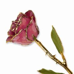 New Lacquer Dipped Dusty Pink Stem Real Rose 24k Gold Trim 11 X 2 5 Gift Box