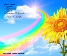 best rainbow bridge images in pet loss rainbow bridge