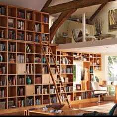 I want a massivly large library in a room with a full wall window! or a sunroof.
