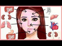 Mappatura Cinese del Viso rivela come ogni brufolo ed eruzione cutanea è collegata allo stato di salute degli organi interni.