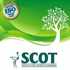 SCOT prides itself on being one of only a handful of ostrich tanneries worldwide to have achieved #ISO14001 status. This means that SCOT is committed to controlling the environmental impact of its tanning facilities and it continually seeks...