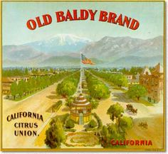Vintage orange crate label art featuring Mt. Baldy (aka Mt. San Antonio) in the background