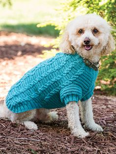 Free Knit Pattern Download -- This Cable Dog Sweater, designed by Esther Bozak, is featured in episode 4, season 4 of Knit and Crochet Now! TV. Learn more here: https://www.anniescatalog.com/knitandcrochetnow/patterns/detail.html?pattern_id=55&series=2