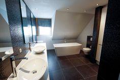 11 beste afbeeldingen van sanidrome van lieshout badkamer
