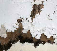Damp Proofing Services in London, Home Counties & Essex
