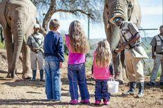 Is jy raadop oor kindervriendelike vakansie-idees waarmee die jongspan gelukkig gaan wees of smag jy na 'n safari-ervaring saam met jou gesin? Hier is sewe kindervriendelike wild-lodges reg oor Suid-Afrika.