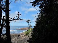point of cape scott View Map, Cape, Plants, Mantle, Cabo, Plant, Coats, Planets