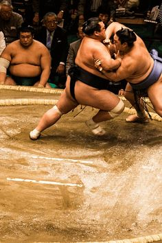 Thinking of seeing sumo when you visit Japan? Find out when & where the official sumo 'basho' tournaments take place, where to sit, how much tickets cost & more!