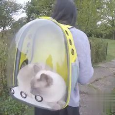Panoramic side opening transparent pet backpack out portable bag cat Kitty, Backpacks, Technology, Tools, Beautiful, Cats, Pet Dogs, Tecnologia, Kitten