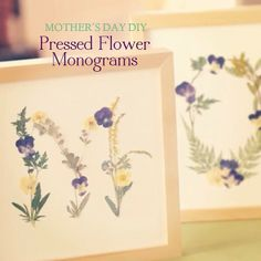 Mother's Day Pressed Flower Mongrams tutorial by Robert Mahar
