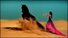 El Caballo Árabe: una criatura excepcional - Sahara Essence (Instrumental Arabic Music)