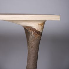 Fragments of Nature | Design Milk: A table that reminds us of where it came from.