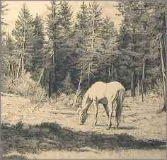 Bev Doolittle - Break in the Day - This is one of more than works of art offered by ArtUSA, The World's Source for Collectible Art. Native American Art, American Artists, Bev Doolittle, Duck Art, Horse Artwork, Equine Art, Outdoor Art, Wildlife Art, Illustrations And Posters