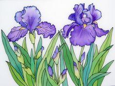 Blue Irises II — Pauline Townsend – Famous Last Words Rock Flowers, Iris Flowers, Art Floral, Watercolor Flowers, Watercolor Paintings, Watercolors, Iris Drawing, Flower Beard, Guache