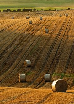 Hay Field-----I wasn't raised on a farm but I find that fields of hay bales for some reason soothe my soul. Country Farm, Country Life, Country Girls, Country Living, Country Roads, Beautiful World, Beautiful Places, Beautiful Pictures, Fields Of Gold