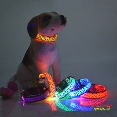 Leopard LED Glow Dog Collar - FREE SHIPPING