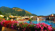 Good Morning Ischia! Today's blog is about hotels in Ischia - www.ischiareview.com