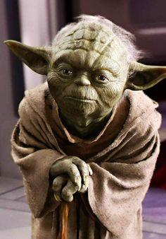 Yoda looking sincere