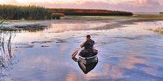 Deer hunting on the Louisiana Marsh - Outdoor Channel