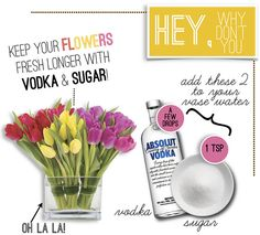 keep your flowers fresh with...vodka and sugar?!