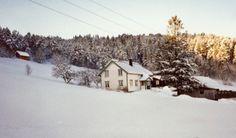 Hendset im Schnee