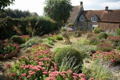 A simple palette of Sedum, Salvias, Origanum, Erigeron and Stipa gigantem for all round structure, colour and texture. Prairie Garden, Meadow Garden, Garden Cottage, Dream Garden, Prairie Planting, Garden Images, Garden Pictures, Garden Photos, Plant Design