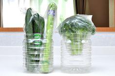 新鮮長持ち!ペットボトルで野菜保存。野菜室もスッキリ   iemo[イエモ]