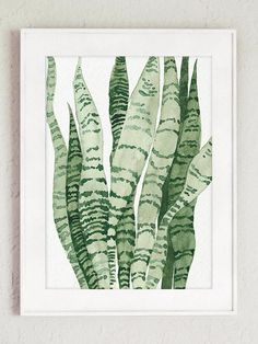 Sansevieria Snake Plant Illustration Guest Room Decor. Green Botanical Art Print. Sansevieria Mother-in-laws tongue Modern Poster. Snake Leaf Succulent Home Decoration. Canvas Minimalist Abstract Giclee Watercolor Painting. In the first Picture the Sansevieria is printed on off-white