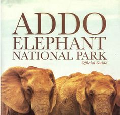 Addo Elephant National Park Official Guide book on sale African Elephant, African Safari, Cap Town, South Afrika, Life Is An Adventure, Travel Abroad, Activities, Parks, Website