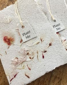 Paper Cards, Diy Paper, Recycled Paper Crafts, Seed Bombs, Paper Press, Paper Plants, Crafts For Kids, Diy Crafts, Seed Paper