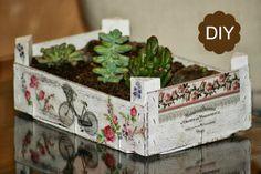DIY recycled fruit box Cajas de fruta recicladas