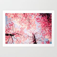 Color Drama I Art Print by Olivia Joy StClaire - $19.00