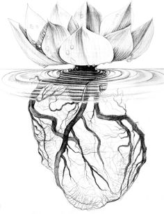 Would be a great tattoo to represent infertility struggles(lotus) and how it's attached to the heart.