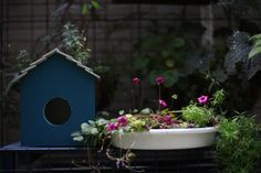 A blue bird house which my son made/Carl Zeiss Planar 1.7/50