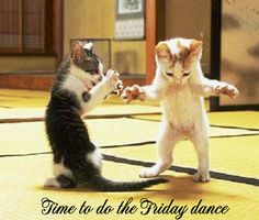 friday dance.... for Lucy.
